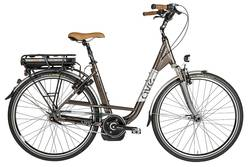 AVE TH-5 Bosch Driven Electric Bike Image