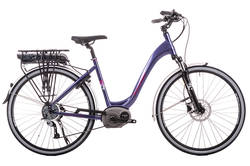 Raleigh Captus Altus 9 Spd Purple