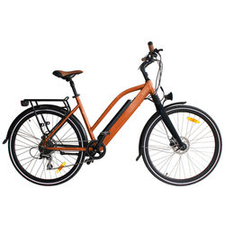 Juicy Bike ROLLER EBike BRACKEN