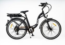 Roodog Chic Grande ST Electric Bike