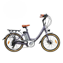 Juicy Bike POCO Electric Bike HEATH