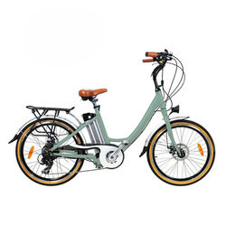 Juicy Bike POCO Electric Bike ICE