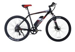 E-Plus Pulse Electric Mountain Bike
